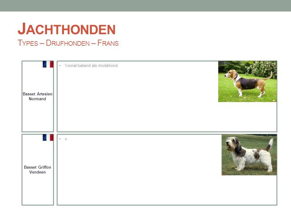 Jachthonden Types – Drijfhonden – Frans