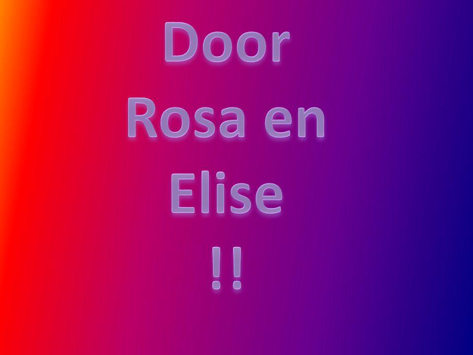 Door Rosa en Elise !!