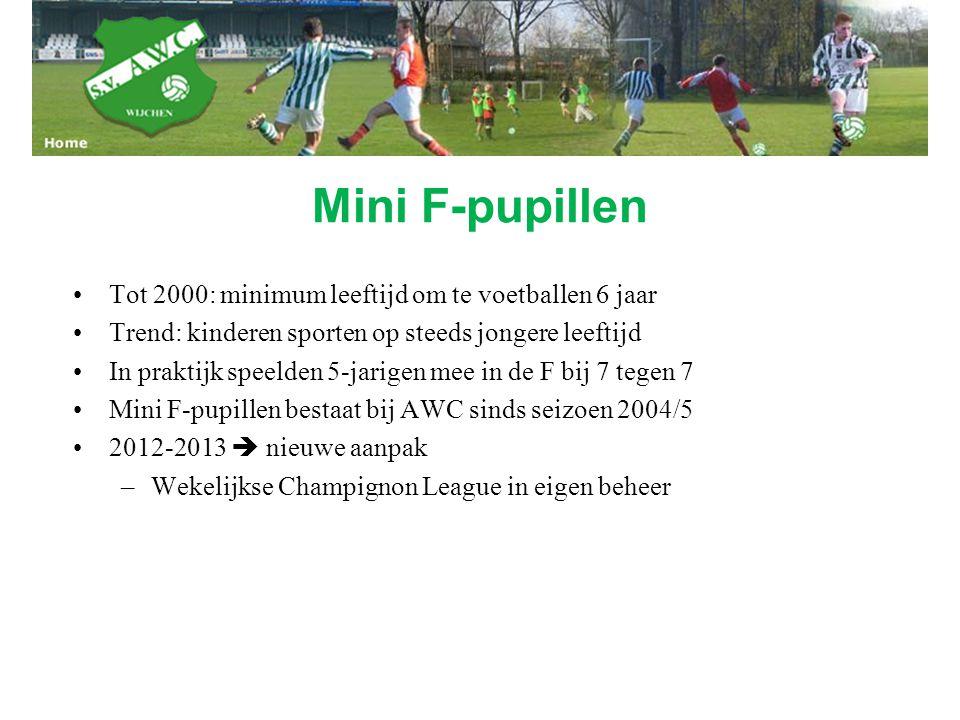 Mini F-pupillen Tot 2000: minimum leeftijd om te voetballen 6 jaar