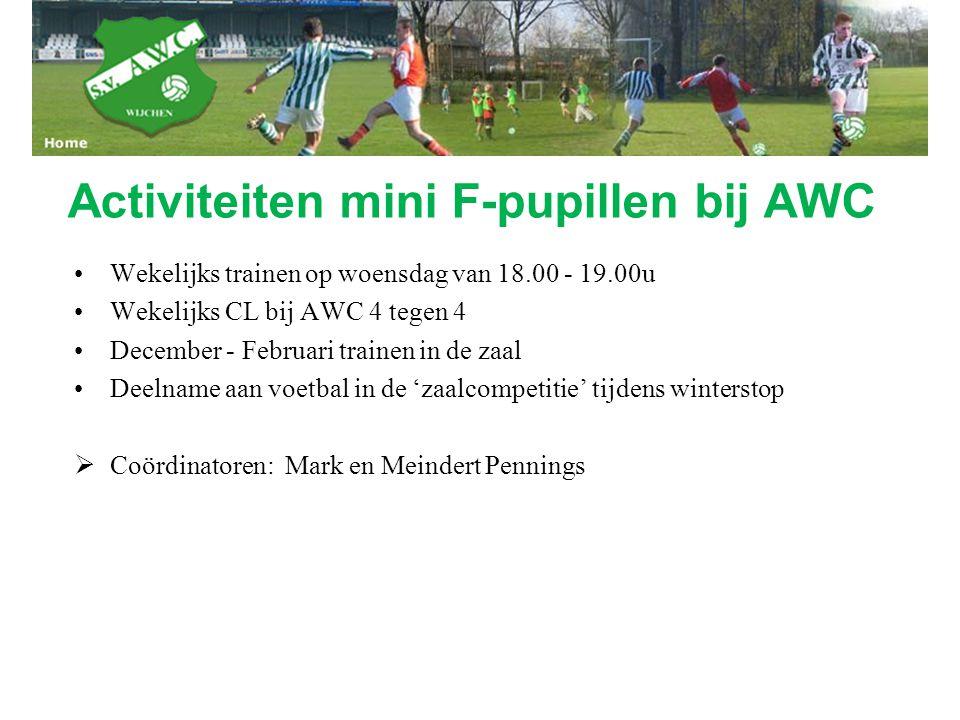 Activiteiten mini F-pupillen bij AWC