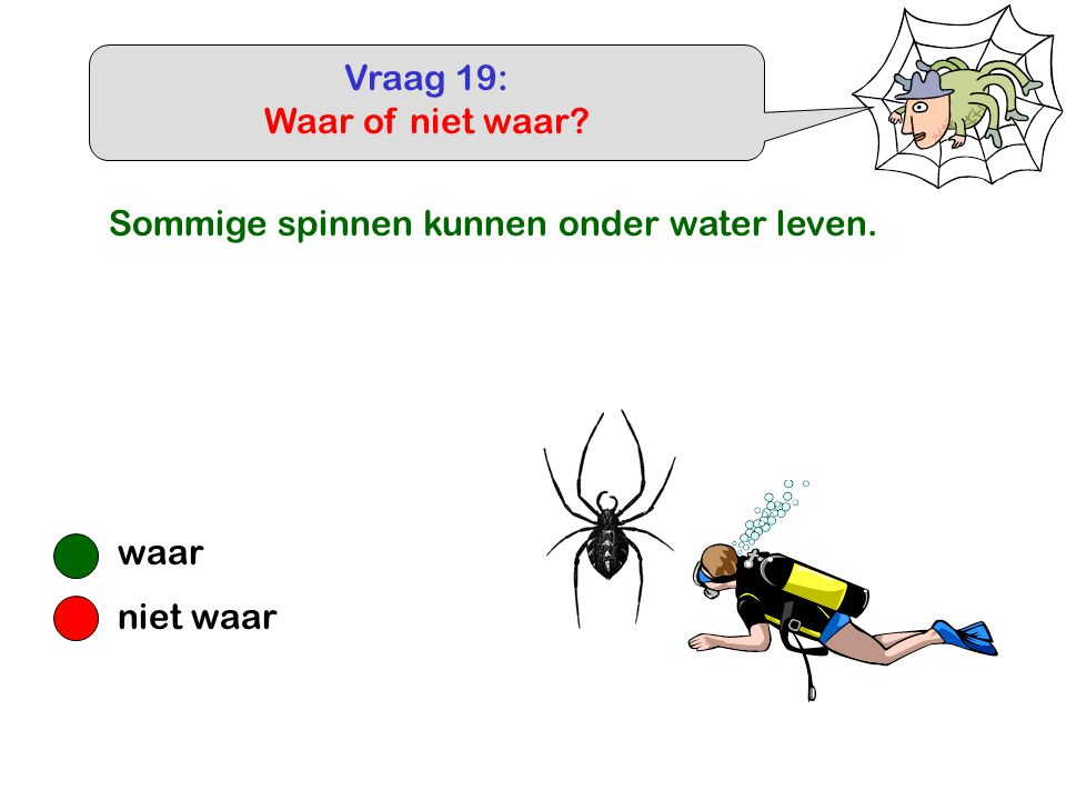 Vraag 19: Waar of niet waar Sommige spinnen kunnen onder water leven. waar niet waar