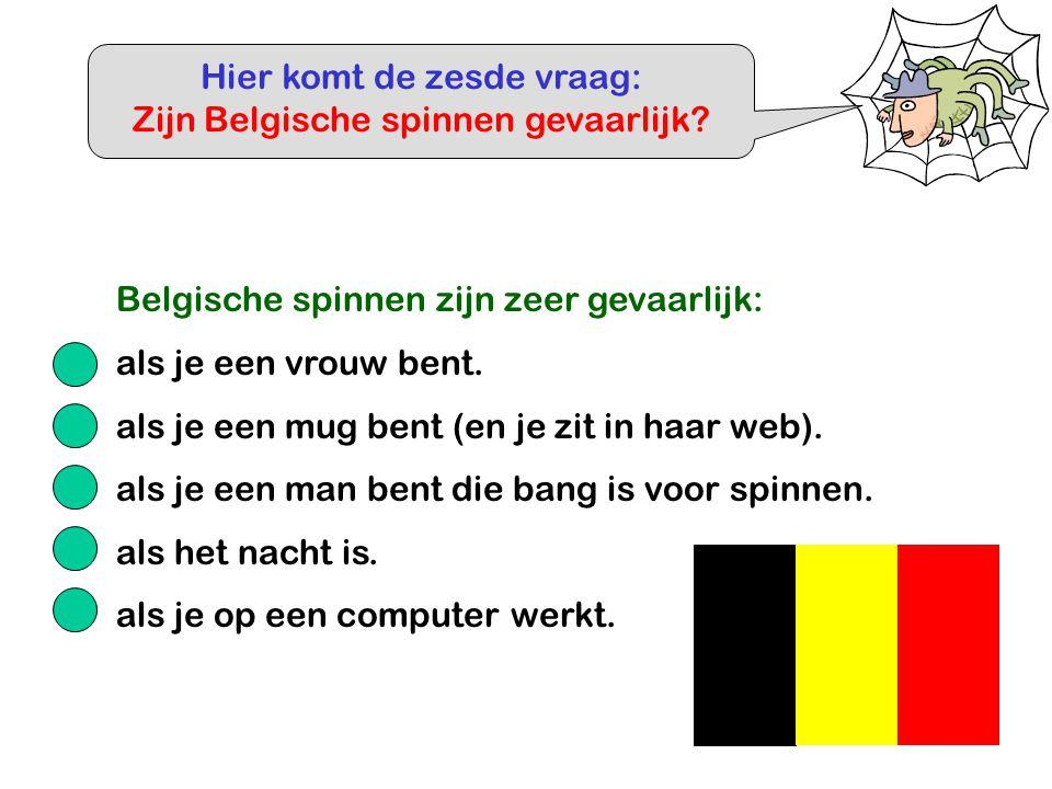 Hier komt de zesde vraag: Zijn Belgische spinnen gevaarlijk