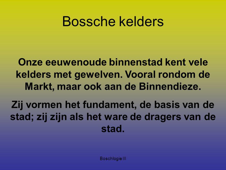 Bossche kelders Onze eeuwenoude binnenstad kent vele kelders met gewelven. Vooral rondom de Markt, maar ook aan de Binnendieze.