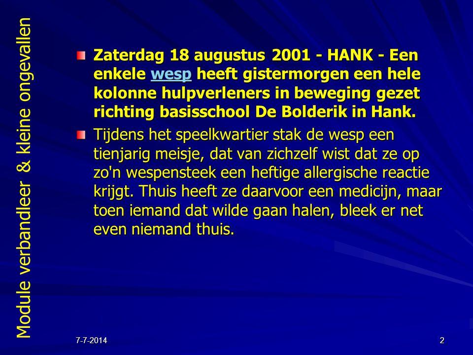 Zaterdag 18 augustus 2001 - HANK - Een enkele wesp heeft gistermorgen een hele kolonne hulpverleners in beweging gezet richting basisschool De Bolderik in Hank.