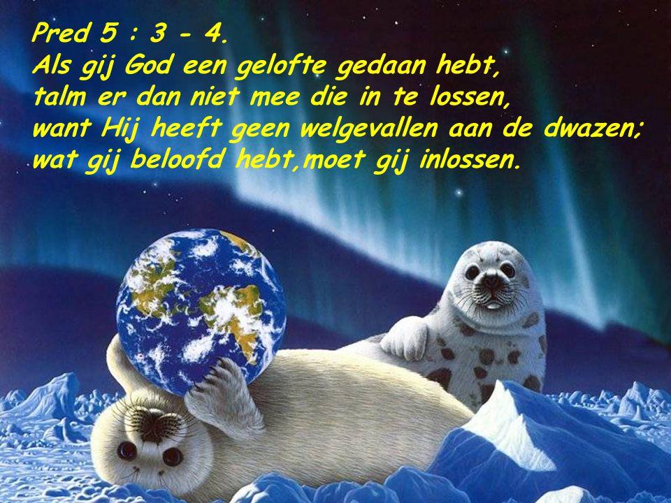 Pred 5 : 3 - 4. Als gij God een gelofte gedaan hebt, talm er dan niet mee die in te lossen, want Hij heeft geen welgevallen aan de dwazen;