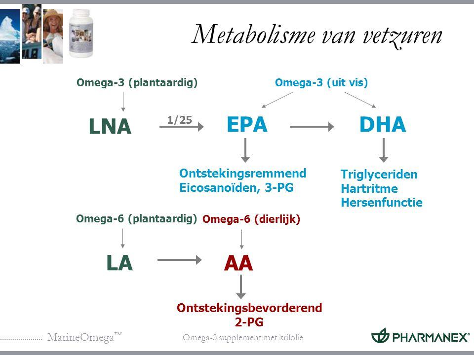 Metabolisme van vetzuren