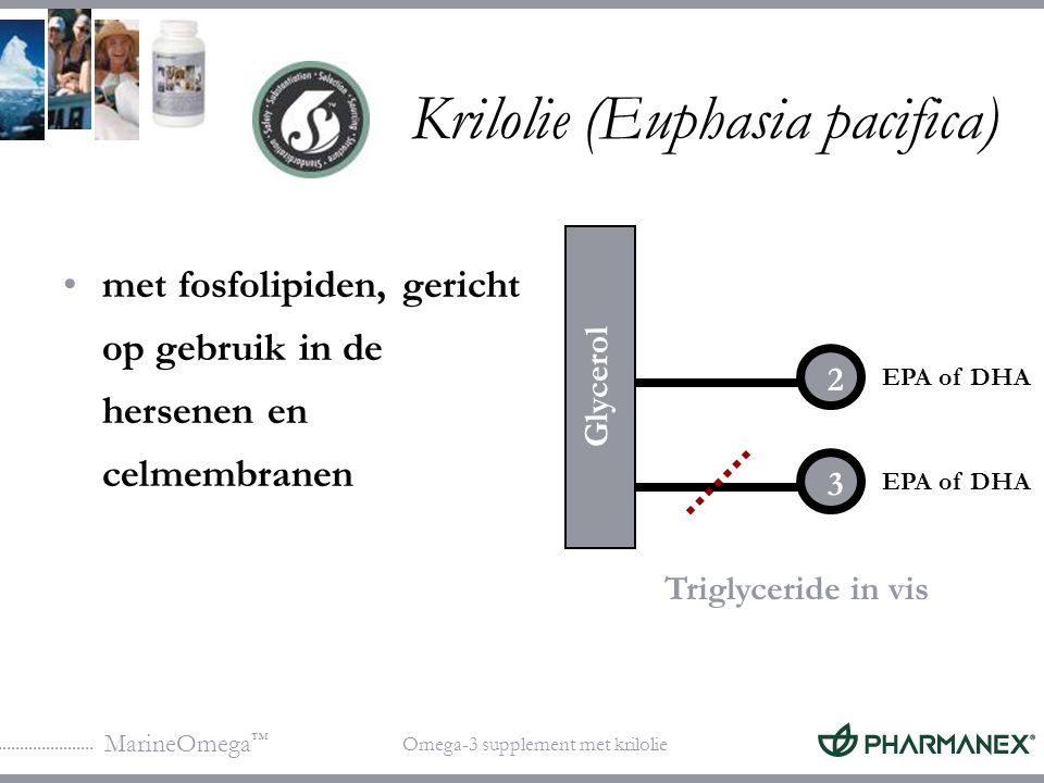 Krilolie (Euphasia pacifica)