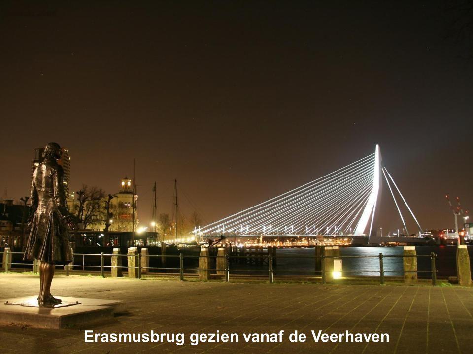 Erasmusbrug gezien vanaf de Veerhaven