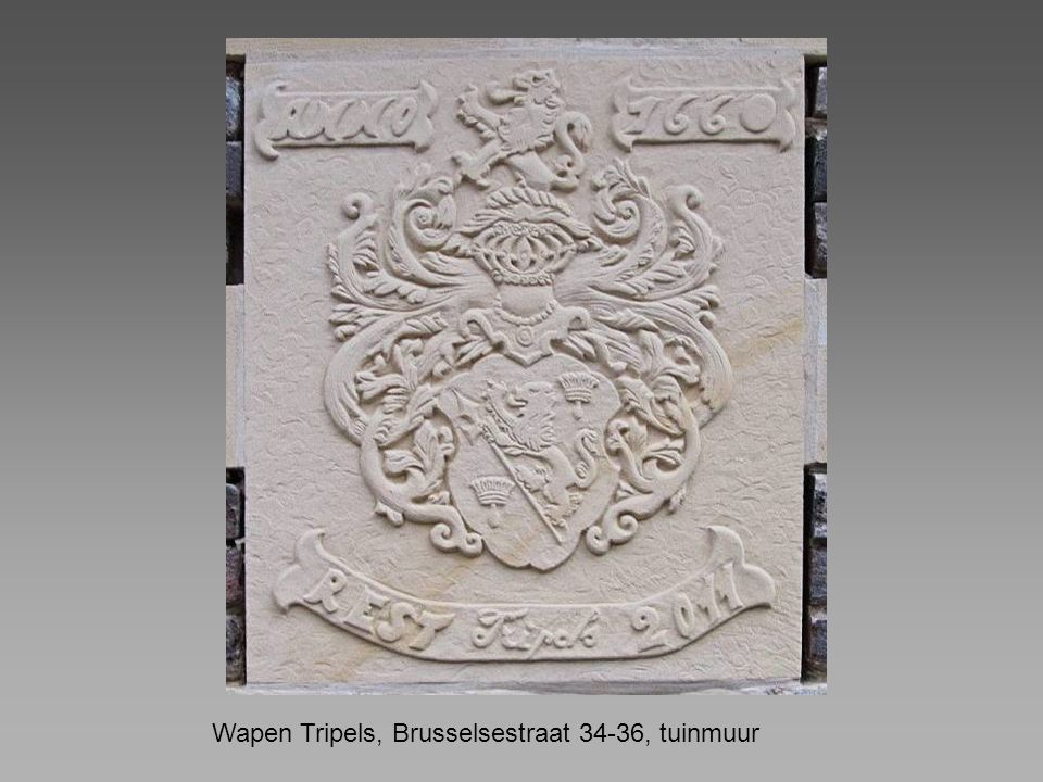 Wapen Tripels, Brusselsestraat 34-36, tuinmuur