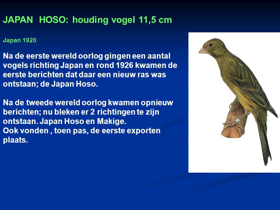 JAPAN HOSO: houding vogel 11,5 cm
