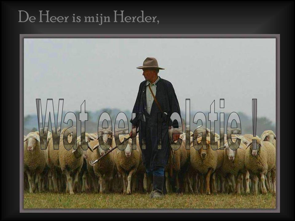 De Heer is mijn Herder, Wat een relatie !
