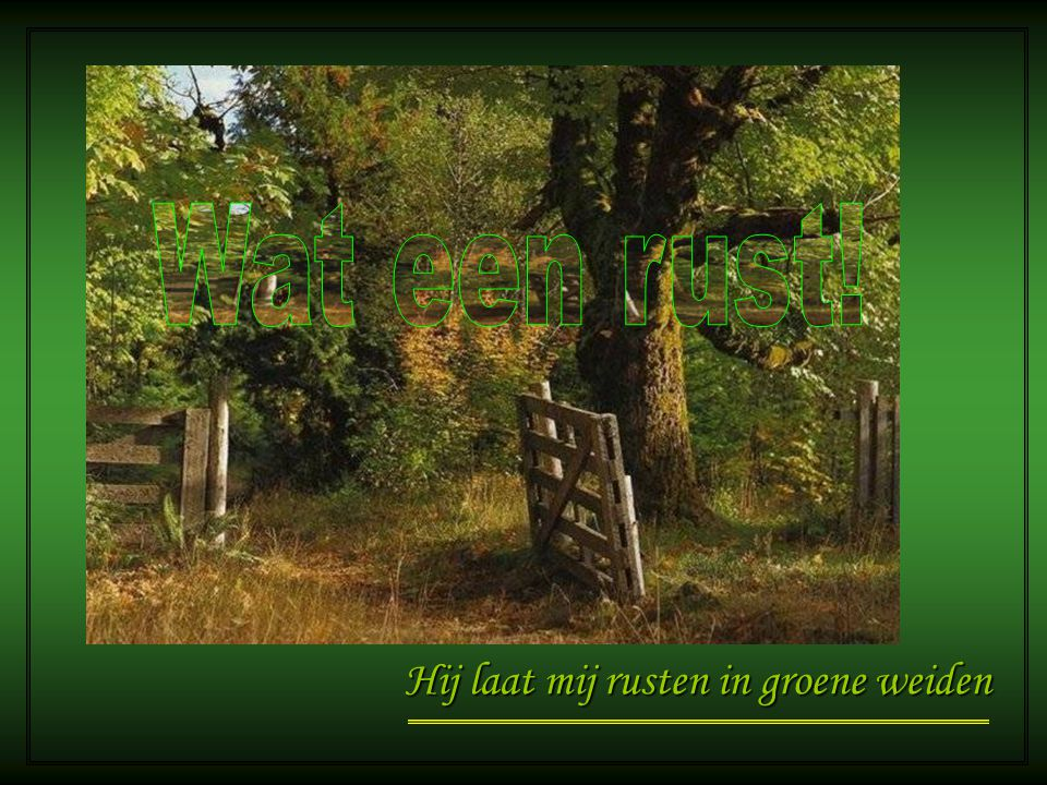 Wat een rust! Hij laat mij rusten in groene weiden
