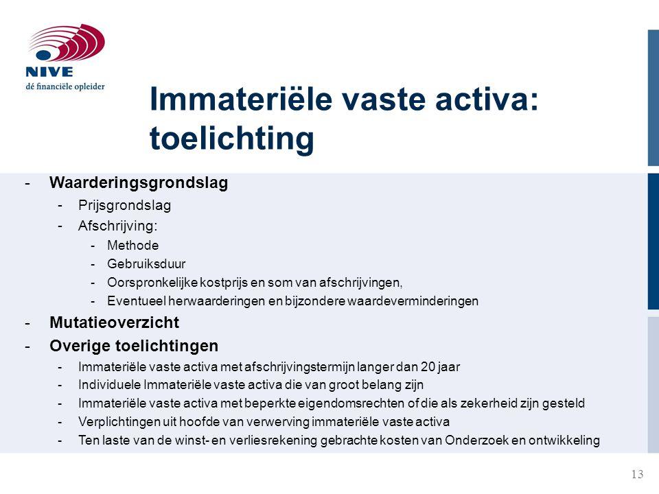 Immateriële vaste activa: toelichting