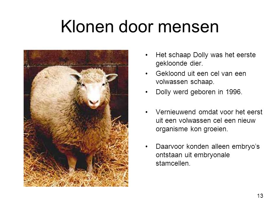 Klonen door mensen Het schaap Dolly was het eerste gekloonde dier.