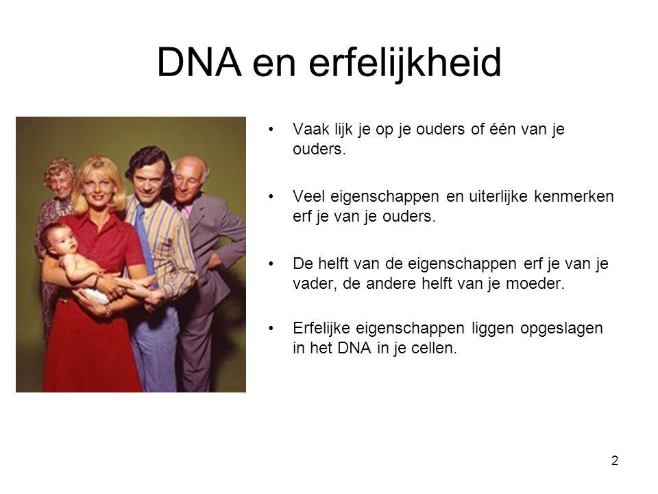 DNA en erfelijkheid Vaak lijk je op je ouders of één van je ouders.