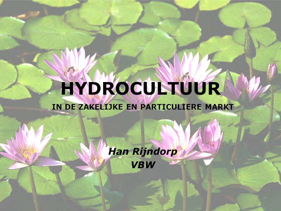 IN DE ZAKELIJKE EN PARTICULIERE MARKT Han Rijndorp VBW