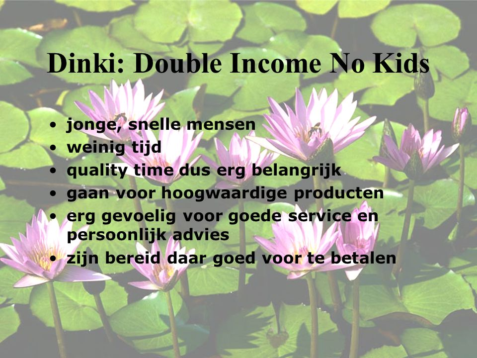 Dinki: Double Income No Kids