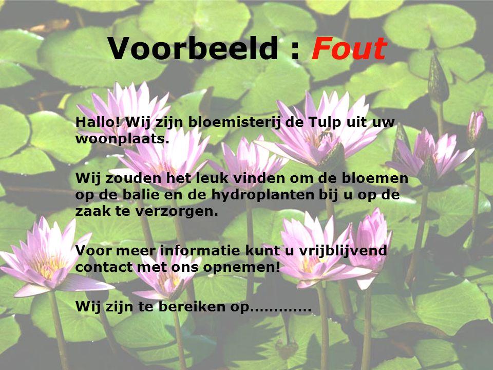 Voorbeeld : Fout Hallo! Wij zijn bloemisterij de Tulp uit uw woonplaats.