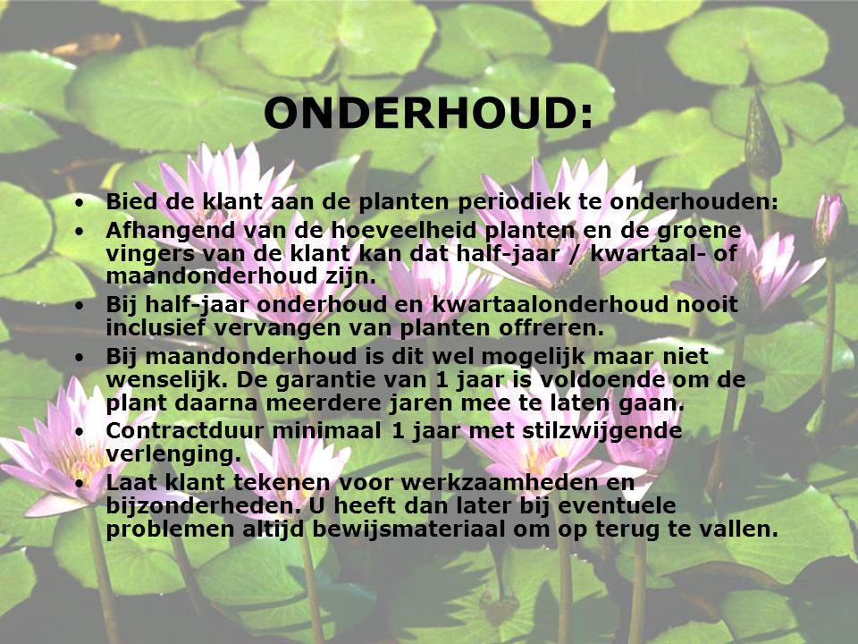 ONDERHOUD: Bied de klant aan de planten periodiek te onderhouden: