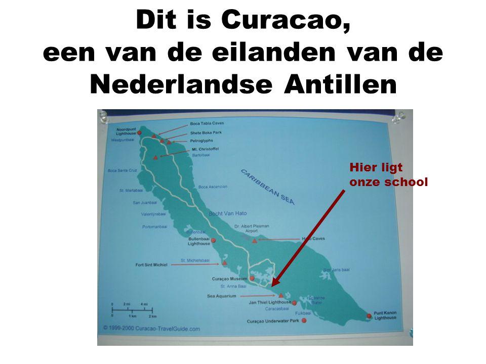 Dit is Curacao, een van de eilanden van de Nederlandse Antillen