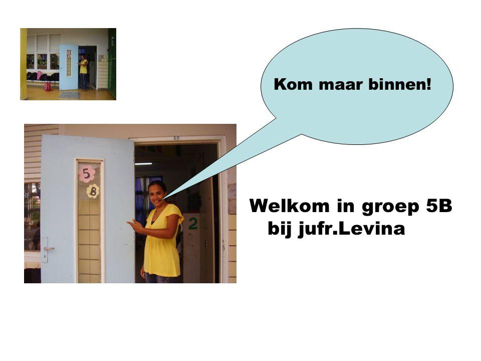 Welkom in groep 5B bij jufr.Levina