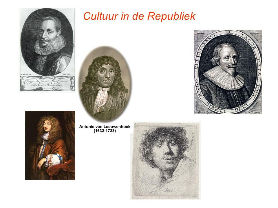 Cultuur in de Republiek