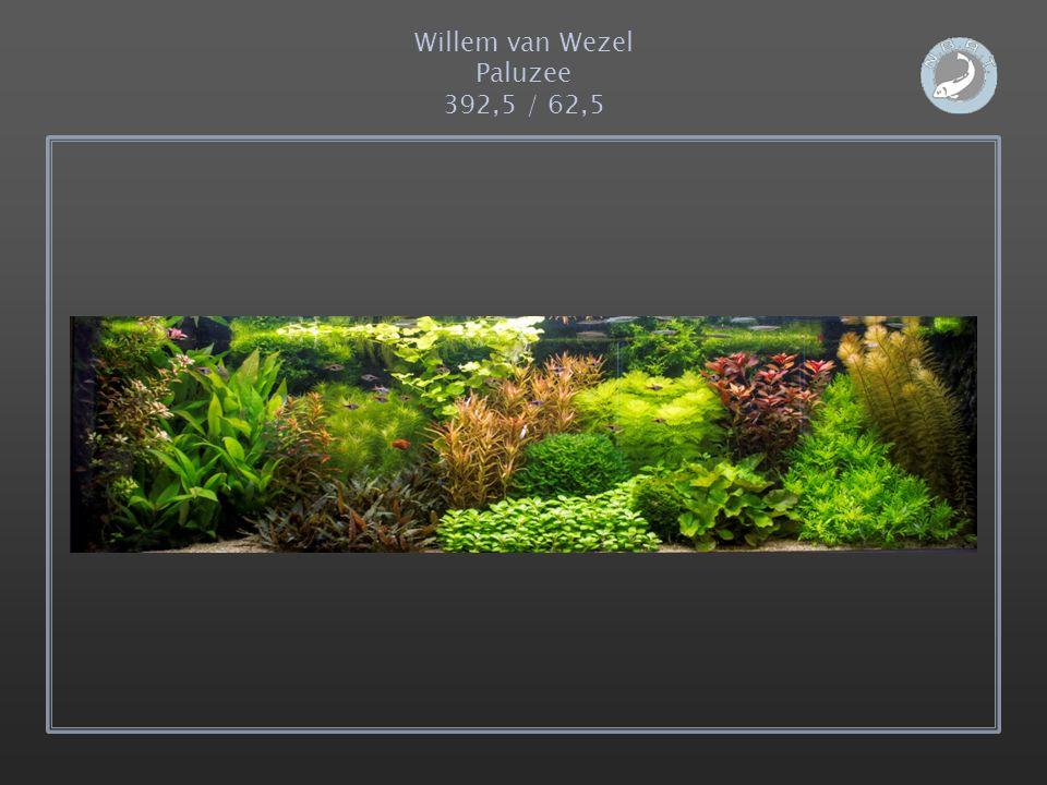 Willem van Wezel Paluzee 392,5 / 62,5