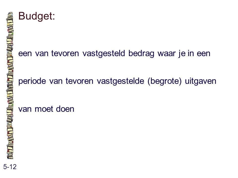 Budget: een van tevoren vastgesteld bedrag waar je in een