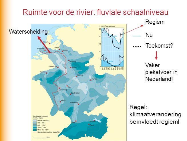 Ruimte voor de rivier: fluviale schaalniveau