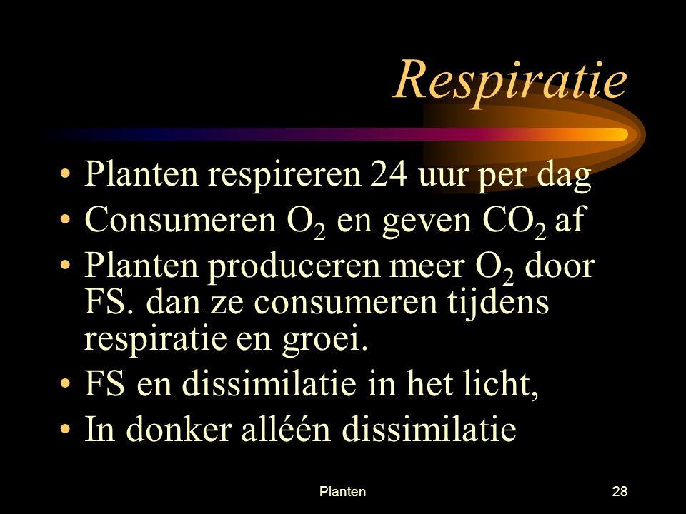 Respiratie Planten respireren 24 uur per dag