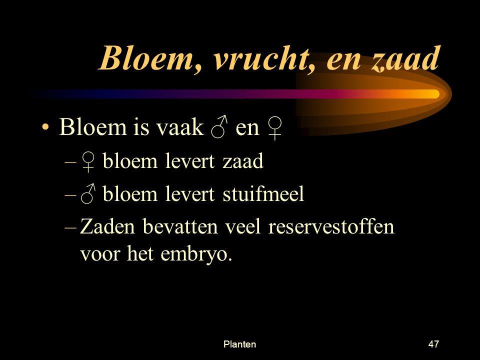Bloem, vrucht, en zaad Bloem is vaak ♂ en ♀ ♀ bloem levert zaad