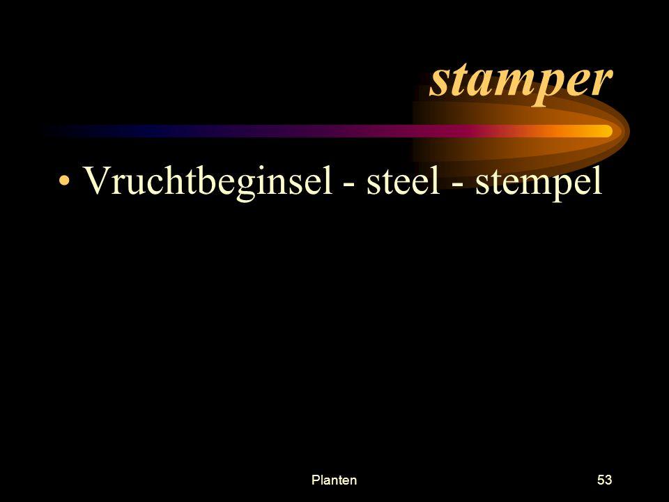 stamper Vruchtbeginsel - steel - stempel Planten