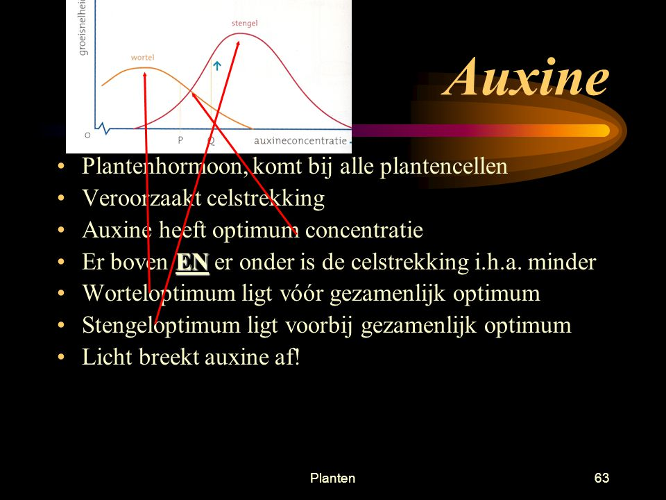 Auxine Plantenhormoon, komt bij alle plantencellen