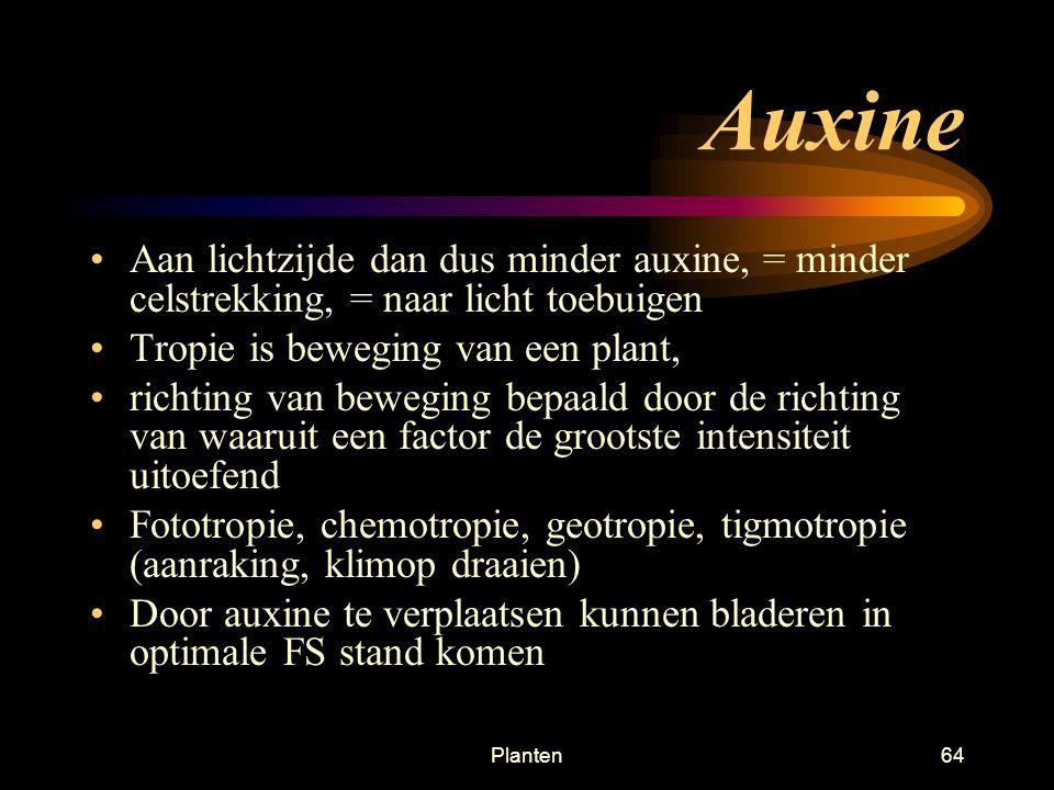 Auxine Aan lichtzijde dan dus minder auxine, = minder celstrekking, = naar licht toebuigen. Tropie is beweging van een plant,