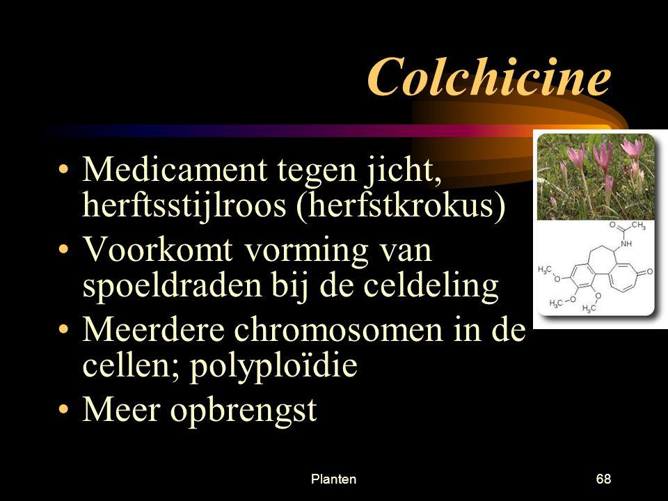 Colchicine Medicament tegen jicht, herftsstijlroos (herfstkrokus)