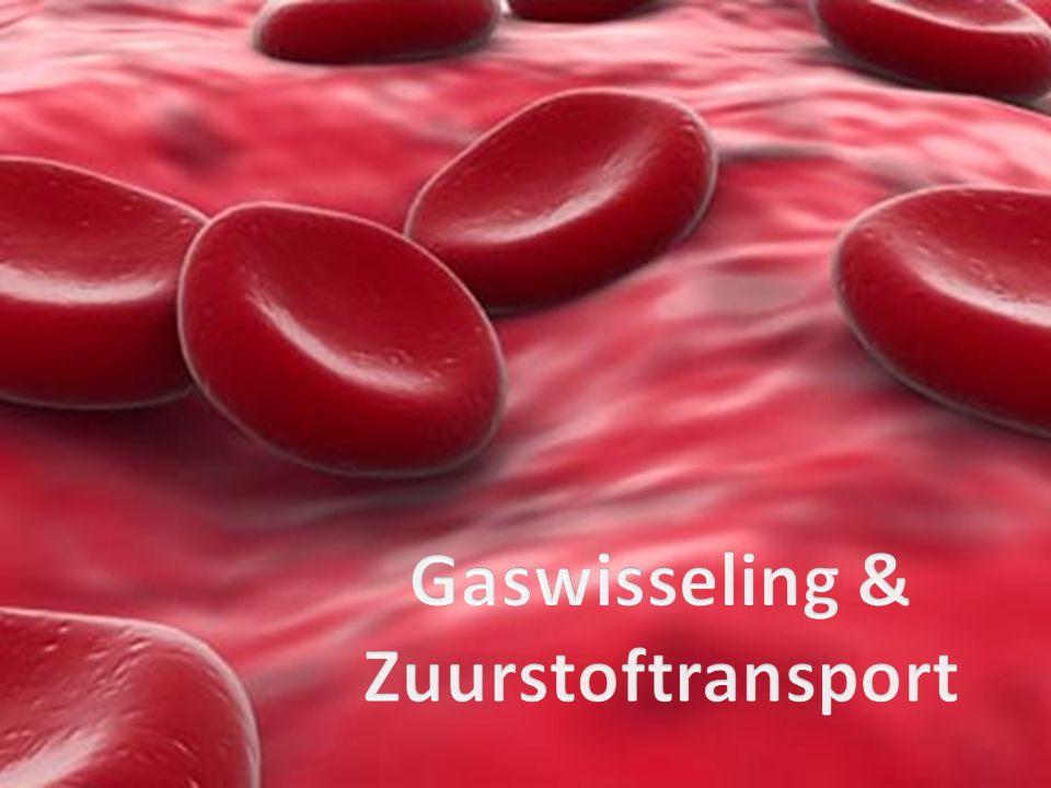 Gaswisseling & Zuurstoftransport