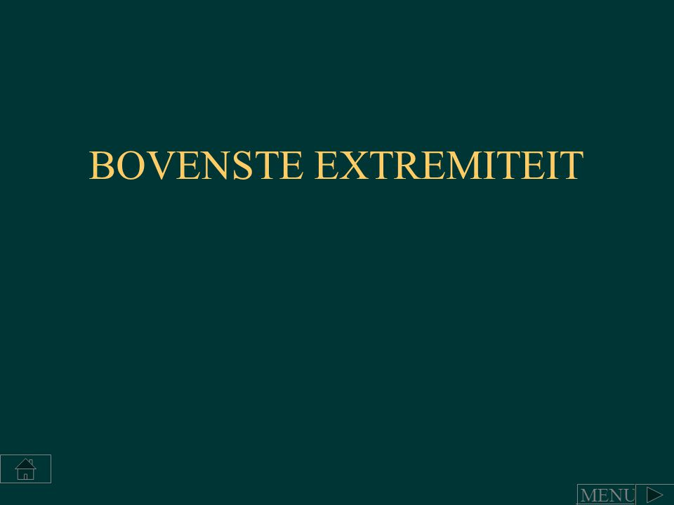 BOVENSTE EXTREMITEIT MENU