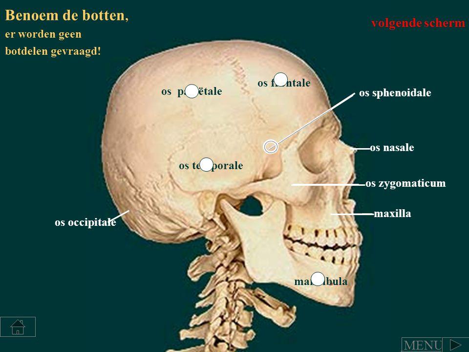 Benoem de botten, volgende scherm MENU er worden geen
