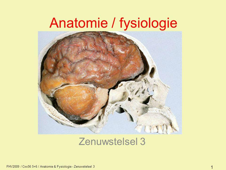 Anatomie / fysiologie Zenuwstelsel 3 AFI1