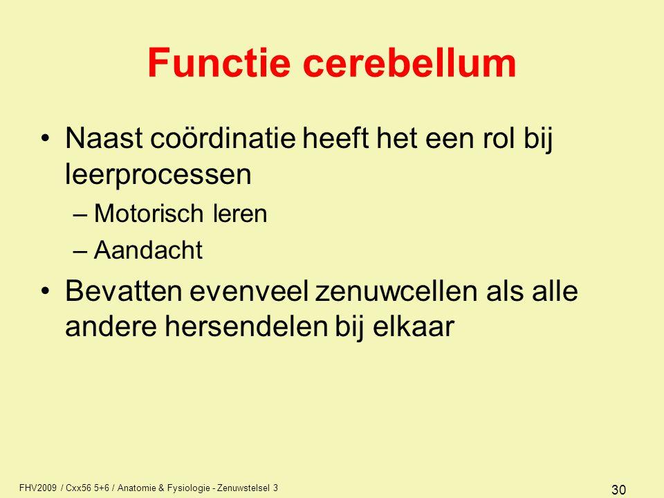 Functie cerebellum Naast coördinatie heeft het een rol bij leerprocessen. Motorisch leren. Aandacht.