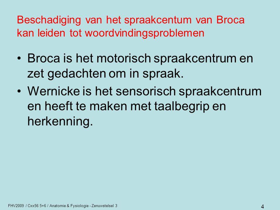 Broca is het motorisch spraakcentrum en zet gedachten om in spraak.