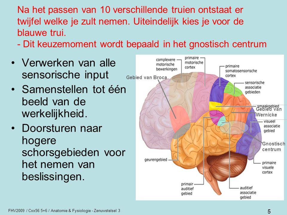 Verwerken van alle sensorische input