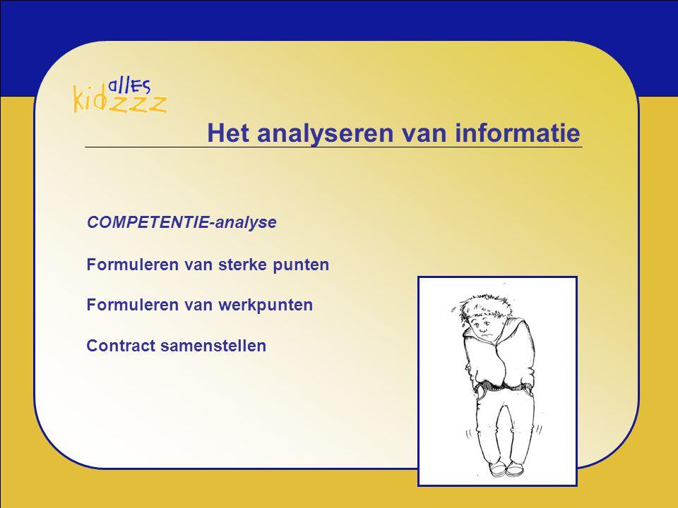 Het analyseren van informatie