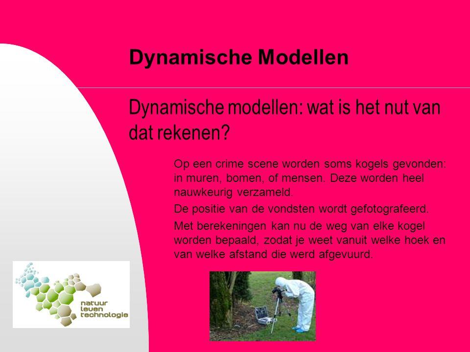 Dynamische Modellen Dynamische modellen: wat is het nut van dat rekenen