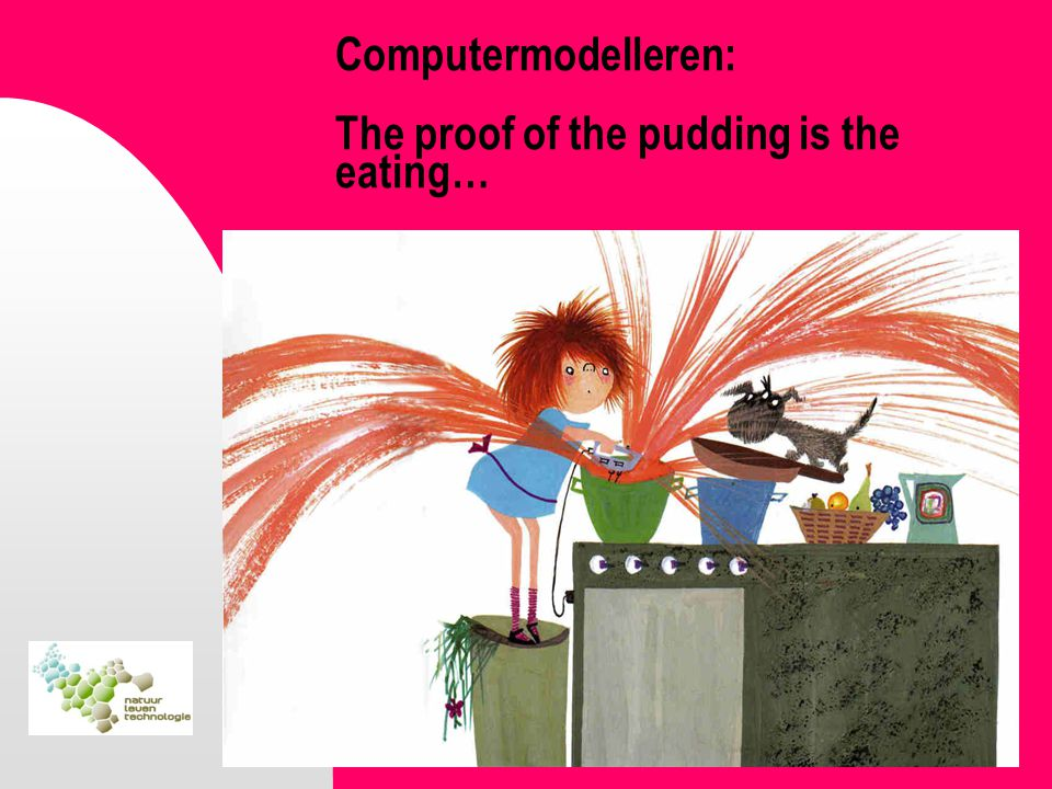 Computermodelleren: The proof of the pudding is the eating…