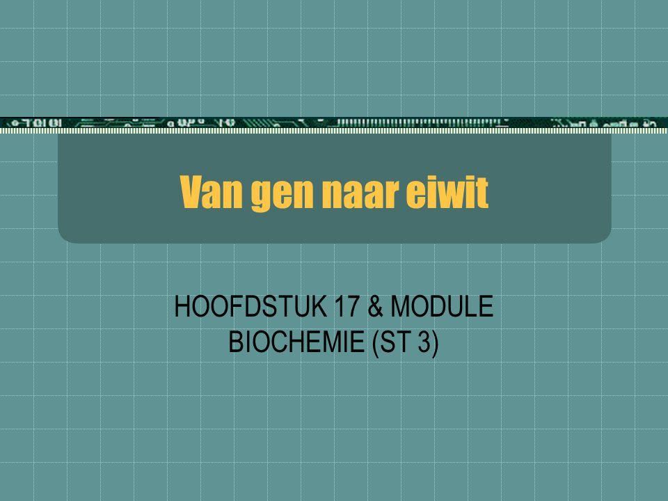 HOOFDSTUK 17 & MODULE BIOCHEMIE (ST 3)