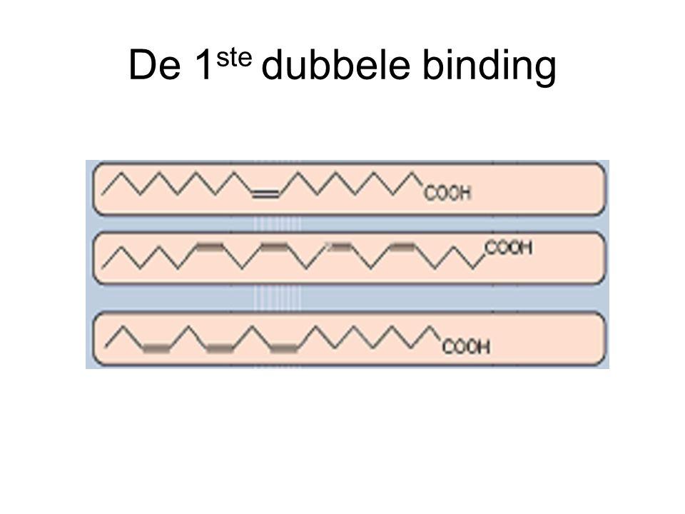 De 1ste dubbele binding