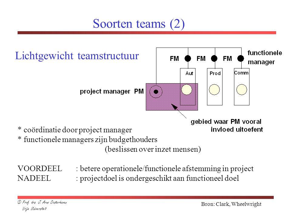 Soorten teams (2) Lichtgewicht teamstructuur