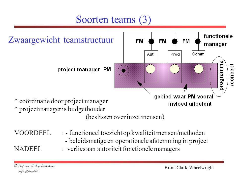 Soorten teams (3) Zwaargewicht teamstructuur
