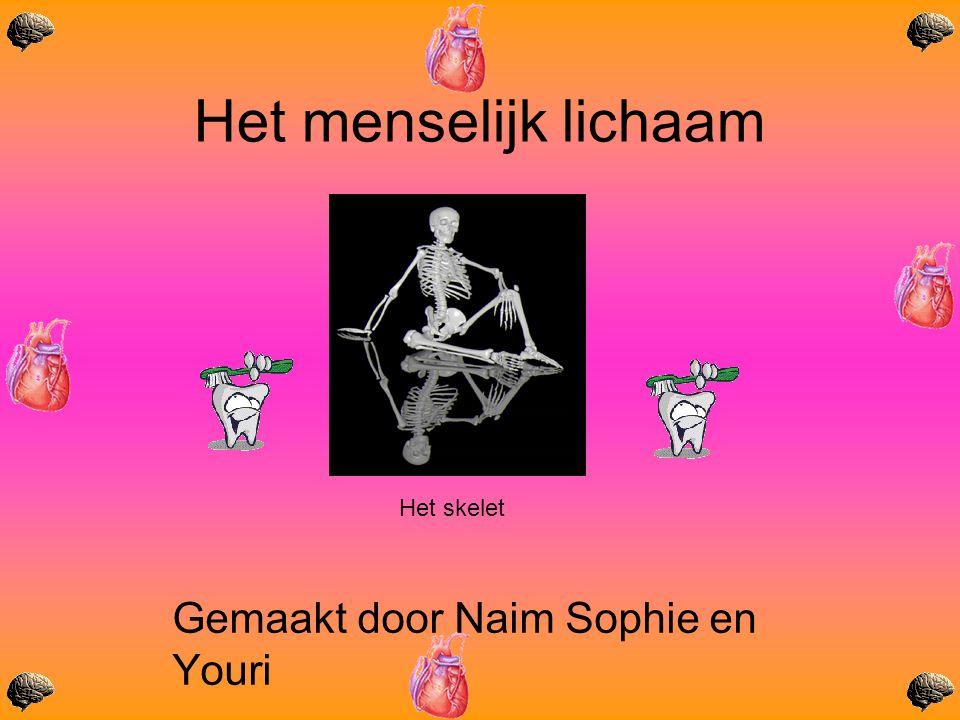 Gemaakt door Naim Sophie en Youri